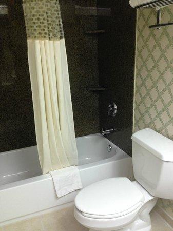 Hampton Inn Burlington: shower