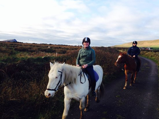 Sea View Equestrian: Wallace and Loki