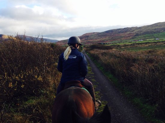 Sea View Equestrian: Katy on her beautiful horse Trap, filling us with info about their surrounding area!!