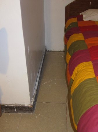 Flying Dog Hostel Cusco : UN poko sucio