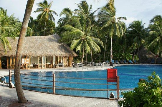 Sun Aqua Vilu Reef: Swimming Pool and Pool Bar
