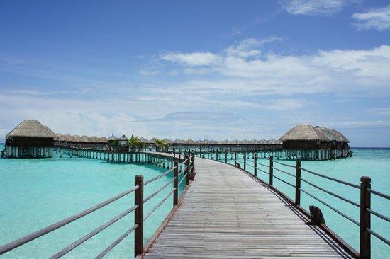 Sun Aqua Vilu Reef: Watervillas