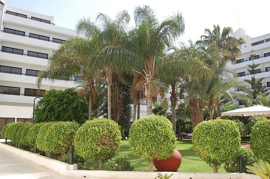 Adams Beach Hotel: в округе