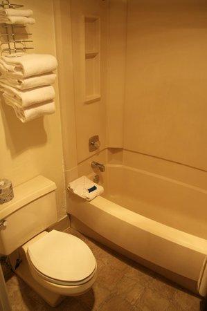 Bryce View Lodge: Dusche mit WC