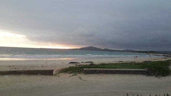 El Cafetal Galapagos: Playa Isla Isabela