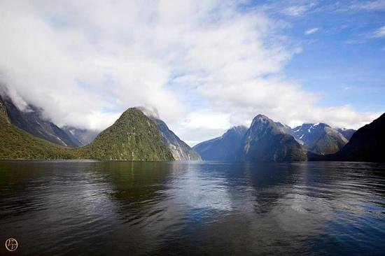 Milford Sound: View from the wharf