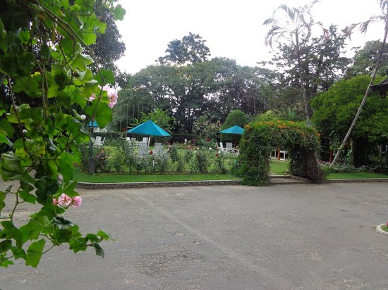 Bandarawela Hotel : hotel garden