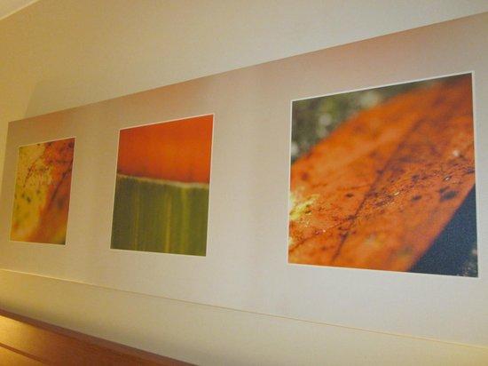 Shantara Resort  Port Douglas: Artwork