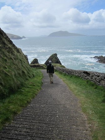 Dingle Tours: Looking out at the old sleeping man