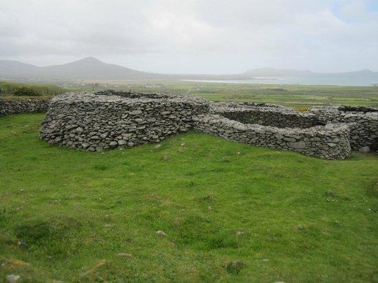 Dingle Tours: Hive style stone huts