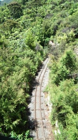Driving Creek Railway and Potteries: From the eyefull tower you get to see the railway and some views across New Zealand