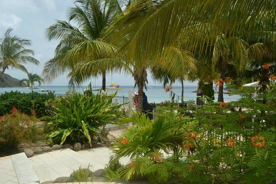 Hotel Riu Palace St Martin: Jardin piscine