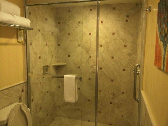 Playa Grande Resort : Guest Bath