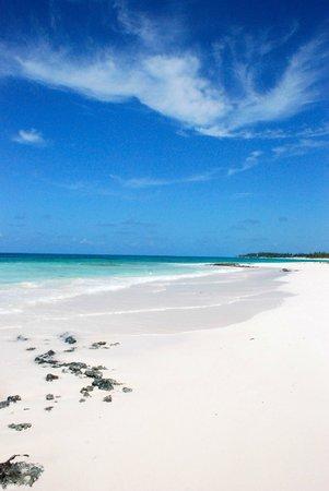 Pineapple Fields Resort: Beach