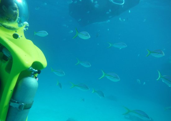 Stuart Cove's Dive Bahamas : Amazing Sub