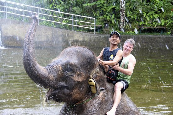 Mason Elephant Lodge: bathing with the elephants