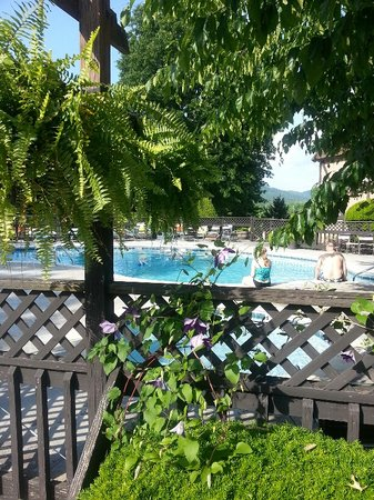 Highland Manor Inn & Conference Center: Pool with Ferns