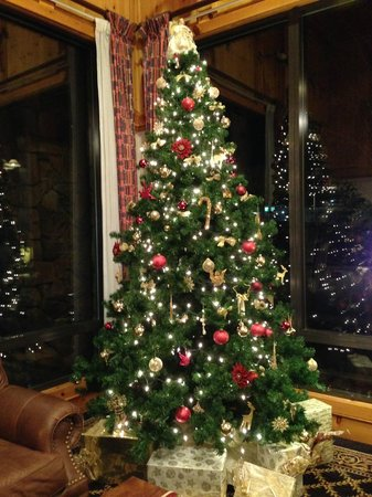 Olympic Inn: It's Christmas