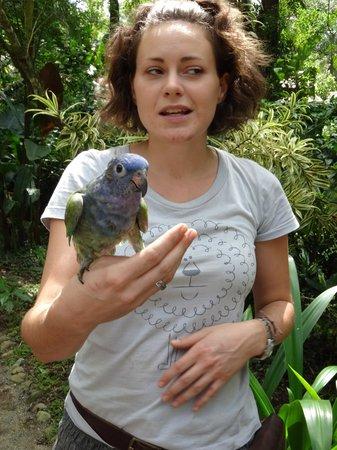 Fundación Jaguar Rescue Center: our guide showing us a parrot