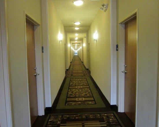 The Holiday Inn Express & Suites Marathon: hallway