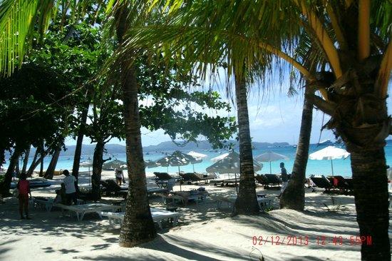 Blue Mango Inn: Blue Mango Beachfront Pic 3