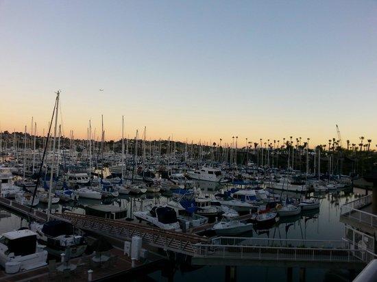 Bay Club Hotel & Marina: Early morning Marina view!