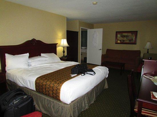 Anaheim Camelot Inn & Suites: quarto