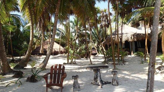 Ixchel Playa & Cabanas: View of Ixchel from beach