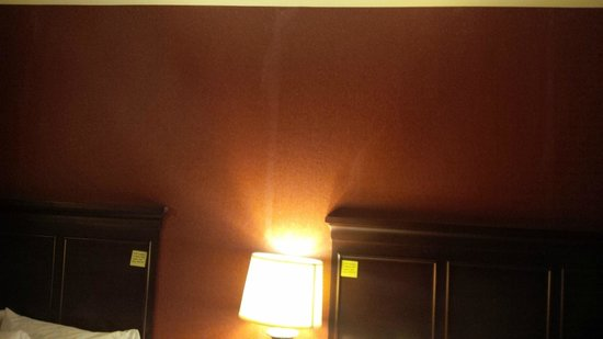 Hampton Inn & Suites Grand Forks : Some kind of stains on wallpaper