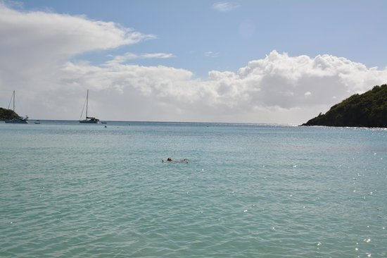 Little Lameshur Bay: calm and turquoise blue waters
