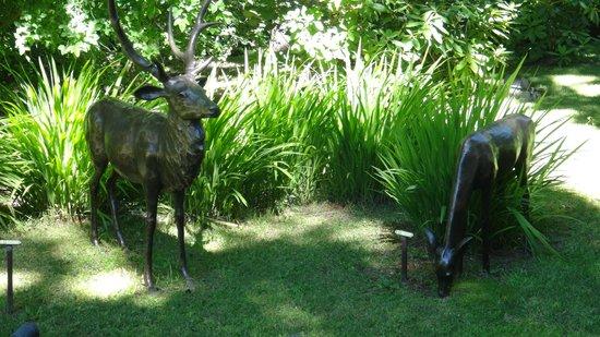 El Casco Art Hotel: Deer in the front garden