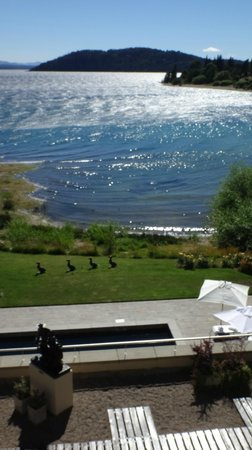 El Casco Art Hotel: View out to lake