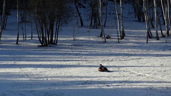 Mountain Home Lodge: sledding!