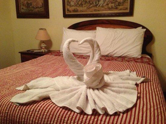Majestic Lodge: Staff create these each night!