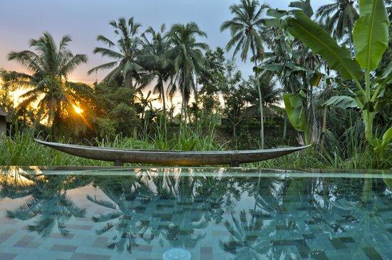 Luwak Ubud Villas : Sunset View