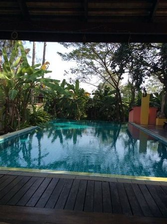 Dreamcatchers B&B: Pool am Morgen