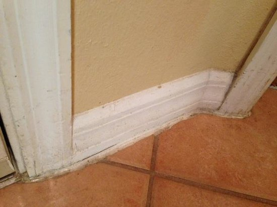 Summer Bay Orlando By Exploria Resorts : Dirty baseboards and trim