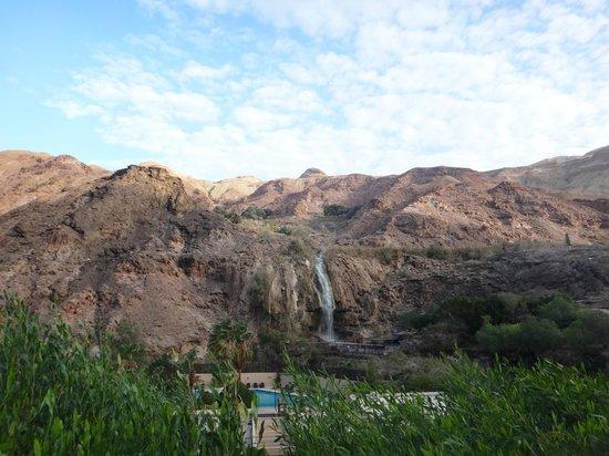 Ma'In Hot Springs: public hotspring near resort - 10min walk