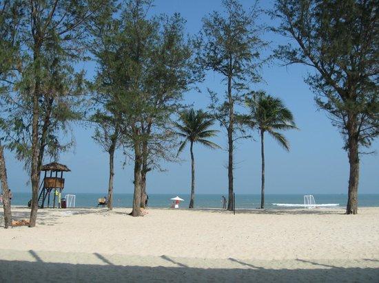 Pullman Danang Beach Resort: View from Pool Bar