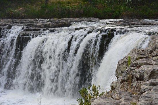 Haruru Falls : Not a big fall