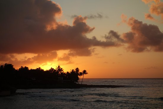 Kuhio Shores Condos: sunrise off the lanai