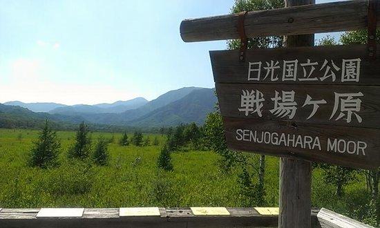 Senjogahara Field: 戦場ヶ原