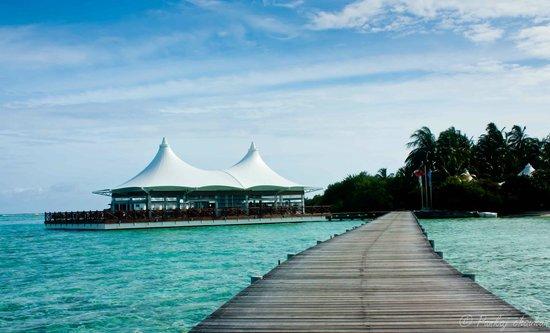 Cinnamon Hakuraa Huraa Maldives: Bar