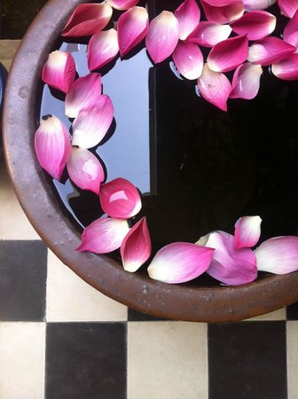 Casa Villa Independence: One of the little details that makes staying here a visual feast !