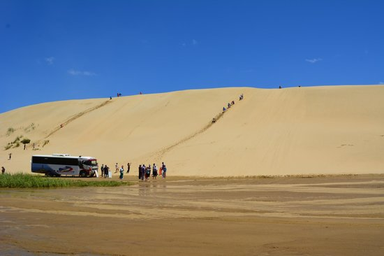 Explore - Dune Rider Cape Reinga : Sand dune