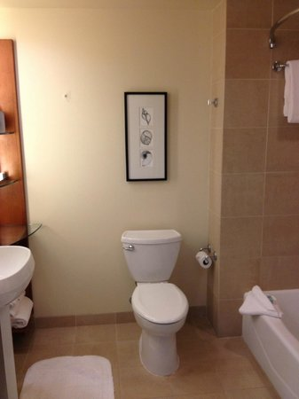 Omni San Diego Hotel : Premier King Room Bathroom