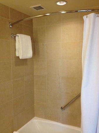 Omni San Diego Hotel : Premier King Room Tub