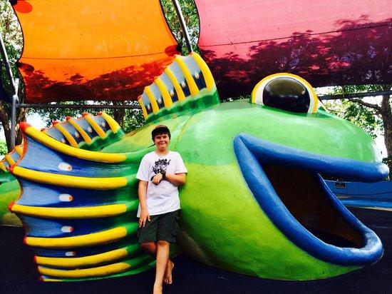 Muddy's Playground: Big fish