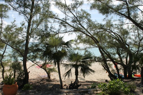 Pigeon Cay Beach Club: View from our Cottage. About 20 m to the beach!