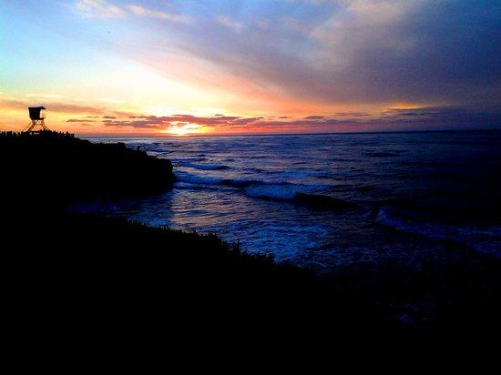 La Jolla Cove : DM